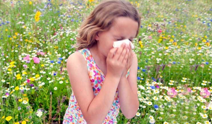 Allergie infantili, l'Oms promuove i  probiotici in gravidanza
