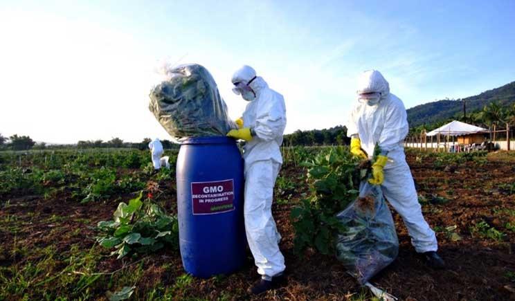 Cibi globalizzati sempre più a rischio: come difendersi dai pericoli alimentari