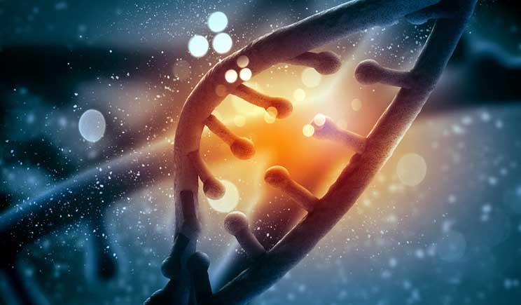 Cancro al polmone, nuove speranze grazie al mir-Test