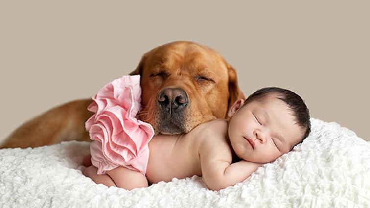 Animali domestici e bambini: convivenza possibile in casa?