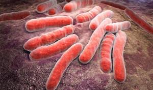 pediatra con la tubercolosi