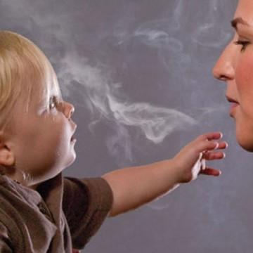 Hector, ecco l'orsetto contro il fumo passivo