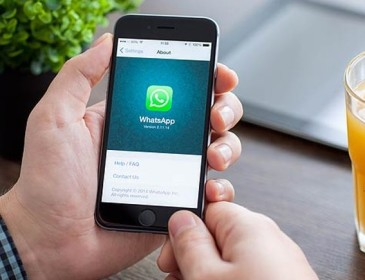 Whatshup, attenzione alla truffa del falso WhatsApp