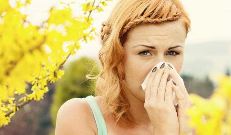Allergie stagionali: prevista invasione di Ambrosia