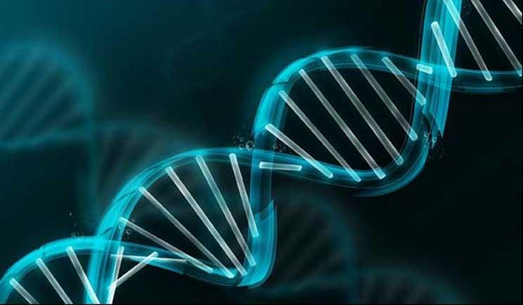 Scoprire un tumore con 13 anni di anticipo grazie ad un test