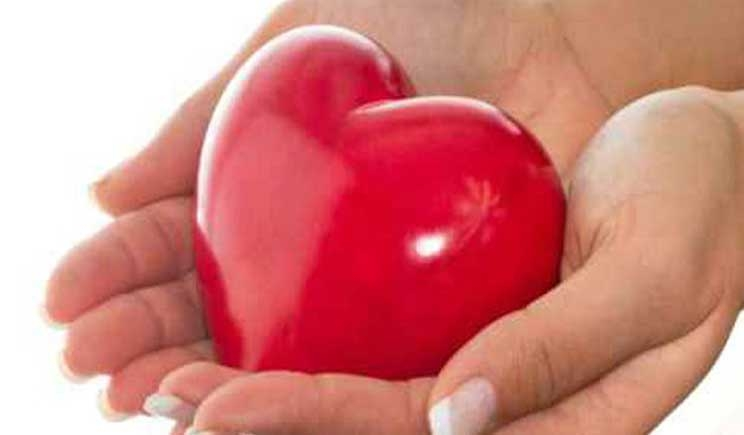 Donazione degli organi: il consenso verrà espresso sulla carta d'identità