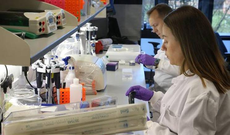 Tumore al pancreas, in arrivo la diagnosi basata sul test delle urine