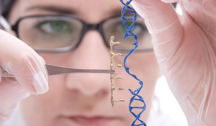 Gran Bretagna: via libera alla modifica degli embrioni umani