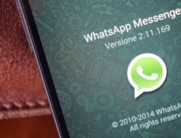 WhatsApp: in arrivo telefonate criptate a prova di intercettazione