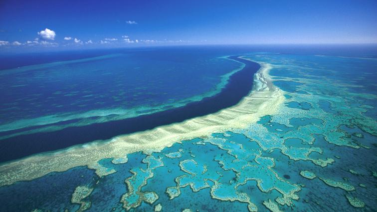 Barriera corallina: a rischio il 93% della superficie