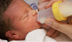 lactoferina ai neonati