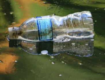Discarica Bussi, pesce contaminato dal mercurio e dai metalli pesanti
