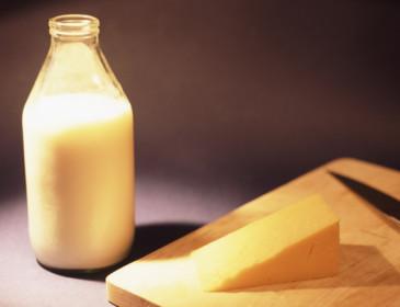 Latte e formaggi non provocano obesità, ma la combattono
