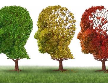 Alzheimer, ecco la proteina che aiuta la memoria