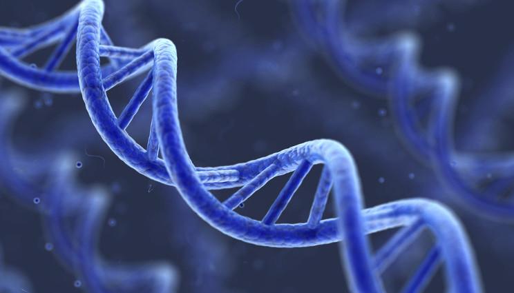 Leucemia, scoperta una sequenza genetica non umana