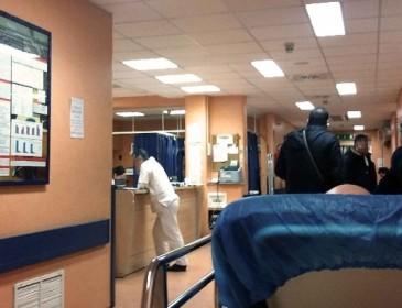 Paziente a letto tra le formiche in ospedale